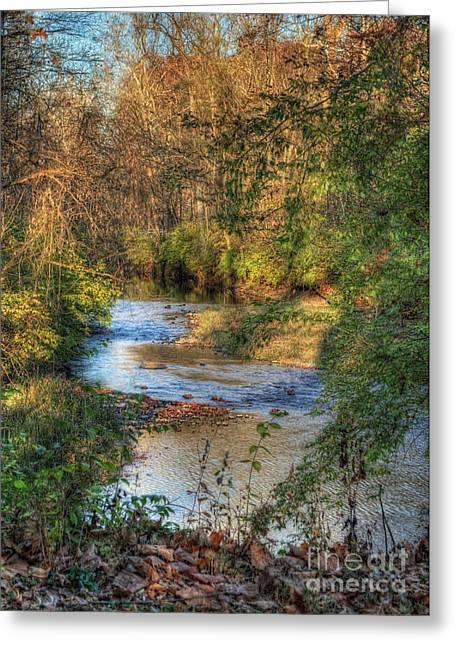 Woodland Scenes Greeting Cards - Tawawa Creek Greeting Card by Pamela Baker