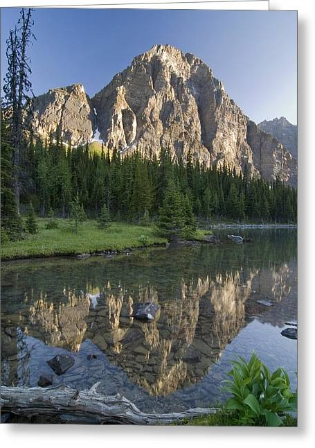 Canadian Prairies Greeting Cards - Taylor Lake, Banff National Park Greeting Card by Philippe Widling