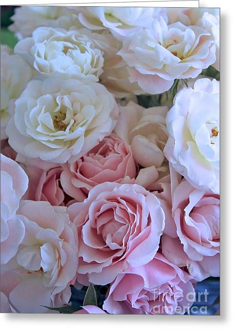 Dressing Room Photographs Greeting Cards - Tea Time Roses Greeting Card by Carol Groenen