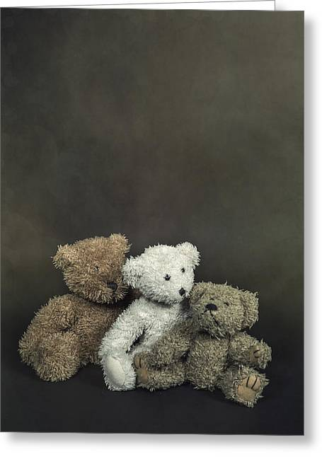 Sit-ins Photographs Greeting Cards - Teddy Bear Family Greeting Card by Joana Kruse