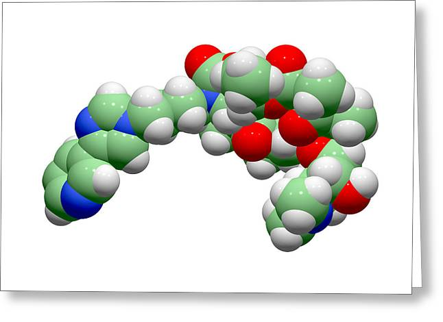 Telithromycin Antibiotic Molecule Greeting Card by Dr Tim Evans