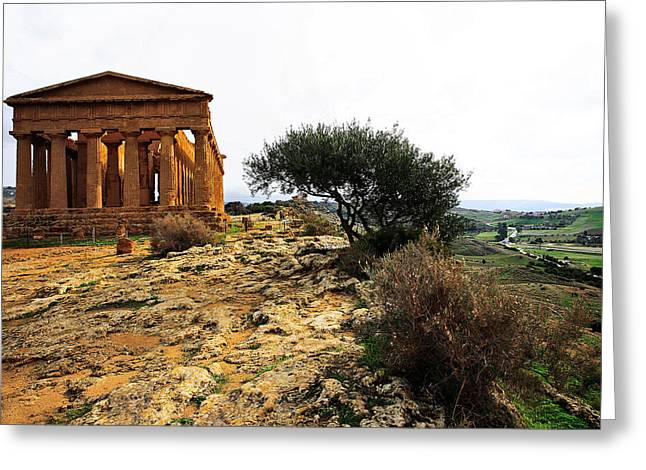 Temple Of Concordia 2 Greeting Card by Steve Bisgrove