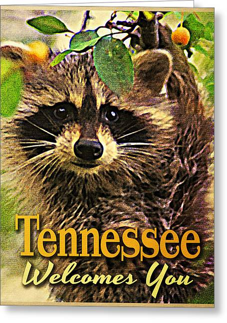Raccoon Digital Art Greeting Cards - Tennessee Racoon Greeting Card by Flo Karp