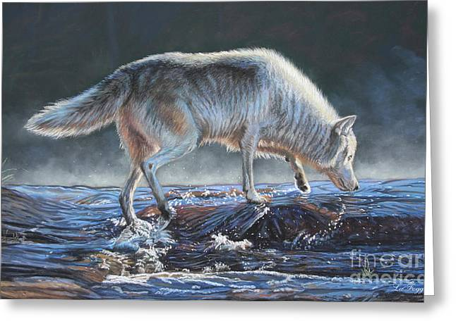 Wolf Pastels Greeting Cards - Testing the waters Greeting Card by Deb LaFogg-Docherty