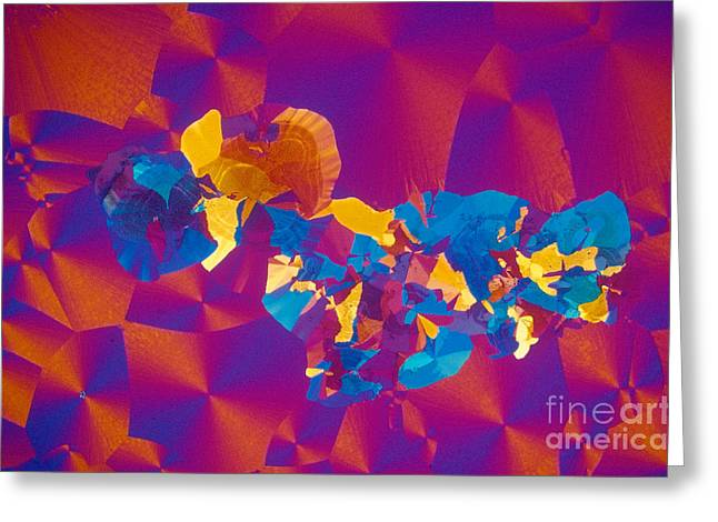 Transmitted Light Micrograph Greeting Cards - Testosterone Crystal Greeting Card by Michael W. Davidson