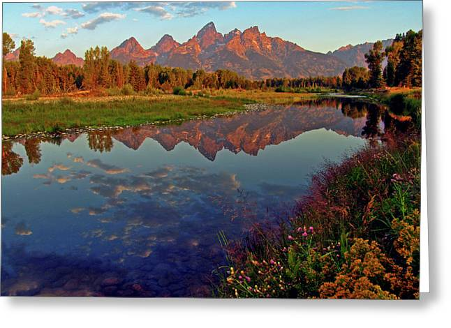 Mountain Reflection Greeting Cards - Teton Wildflowers Greeting Card by Scott Mahon