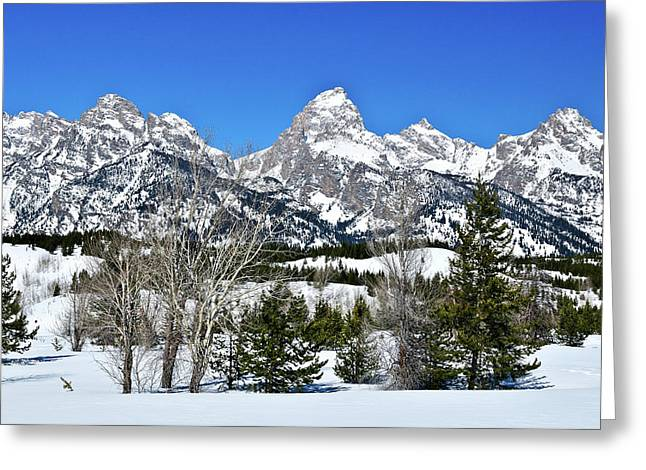 Grand Tetons Greeting Cards - Teton Winter Landscape Greeting Card by Greg Norrell