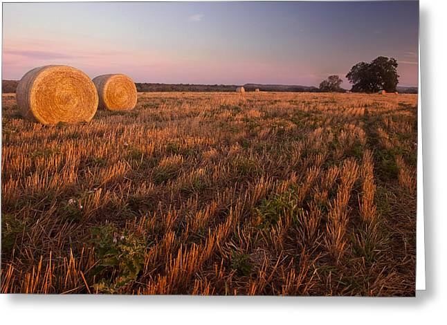 The Hills Greeting Cards - Texas Hay Field 3 Greeting Card by Paul Huchton