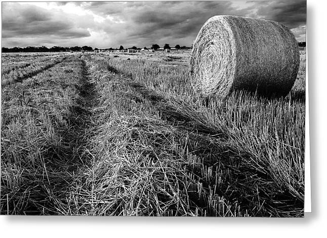 Hay Bales Greeting Cards - Texas Hill Country Hay Field Greeting Card by Paul Huchton