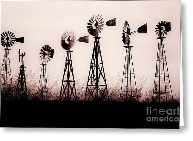 Texas Windmills Greeting Card by Tamyra Ayles