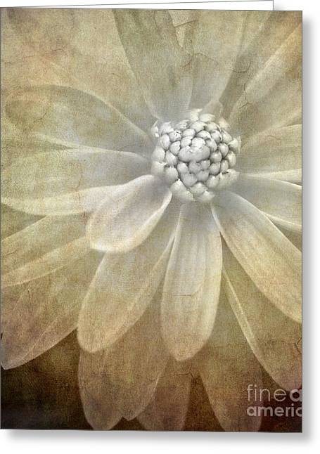 White Florals Greeting Cards - Textured Dahlia Greeting Card by Meirion Matthias