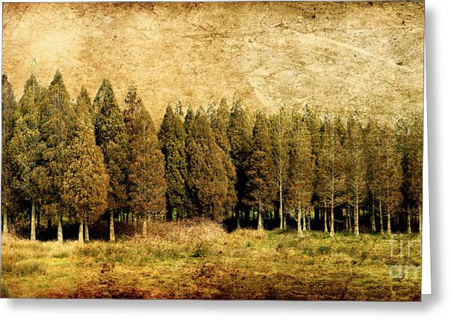 Olive Green Digital Art Greeting Cards - Textured Trees Greeting Card by Linde Townsend