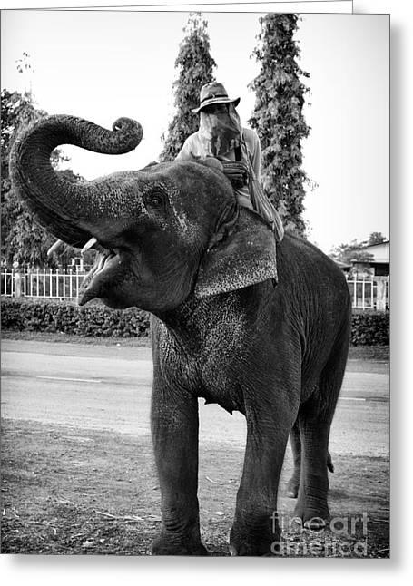 Thanh Tran Greeting Cards - Thai Elephant Roar Greeting Card by Thanh Tran