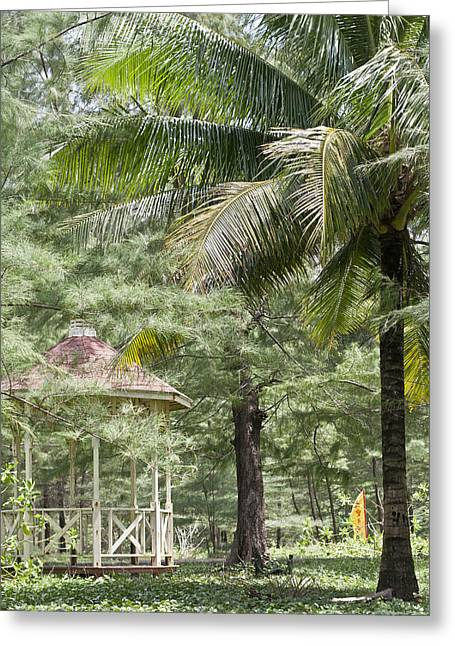 Fowler Park Greeting Cards - Thailand Tropics Greeting Card by Nomad Art And  Design