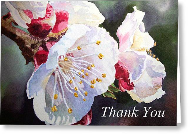 Apricots Paintings Greeting Cards - Thank you Card Apricot Blossom Greeting Card by Irina Sztukowski