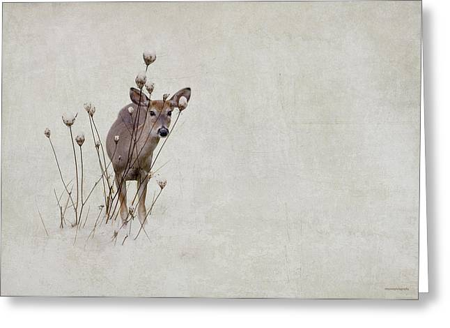 Does. Winter Greeting Cards - Thanksgiving Visitor Greeting Card by Ron Jones