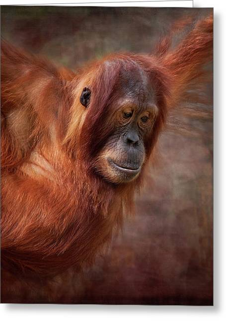 Orangutan Digital Art Greeting Cards - That Look Greeting Card by Heather Thorning