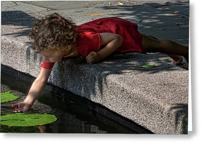 Water Play Greeting Cards - The Age of Wonder Greeting Card by Robert Ullmann