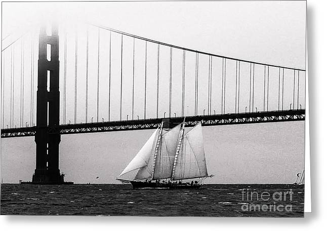Schooner Greeting Cards - The America And The Golden Gate Greeting Card by Patty Descalzi