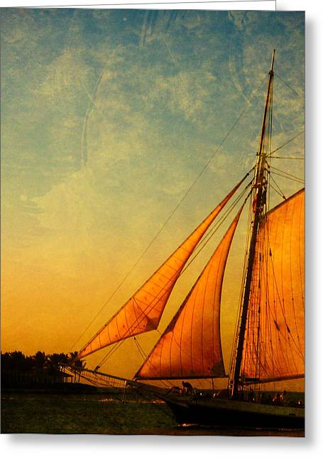 Boat Cruise Greeting Cards - The America Nr 3 Greeting Card by Susanne Van Hulst