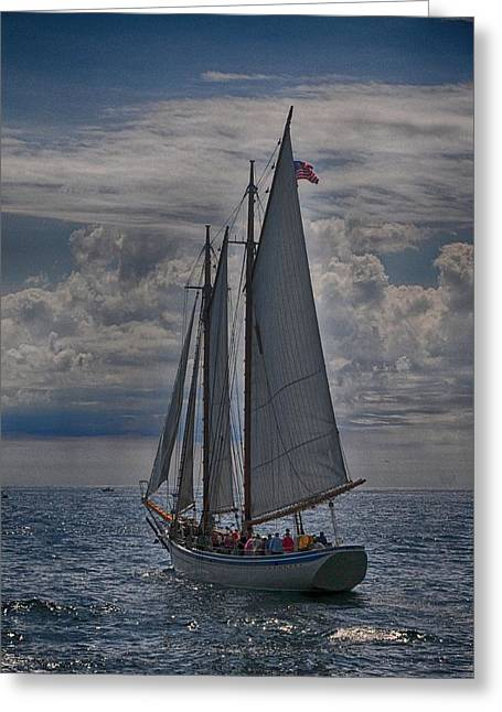 Schooner Greeting Cards - The American Eagle Greeting Card by Mike Martin