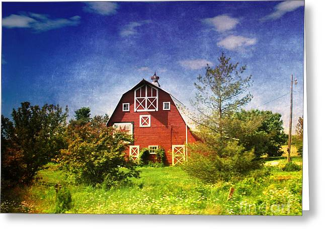 Amish Greeting Cards - The Amish House Greeting Card by Susanne Van Hulst