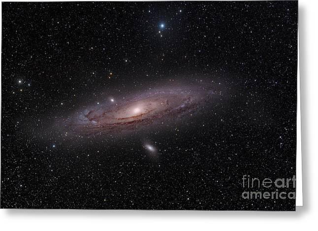 Messier 31 Greeting Cards - The Andromeda Galaxy Greeting Card by John Davis