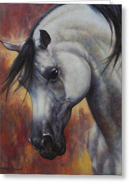 Arabian Horses Greeting Cards - The Arabian Greeting Card by Harvie Brown