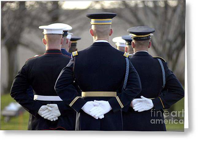Hands Behind Back Greeting Cards - The Armed Forces Honor Guard Greeting Card by Stocktrek Images