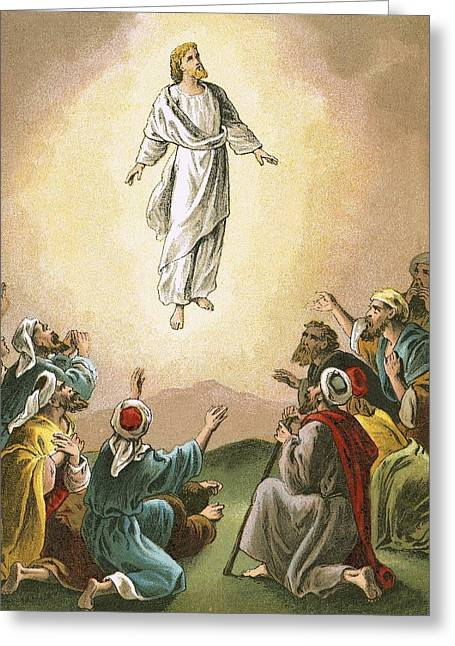 Bible Greeting Cards - The Ascension Greeting Card by English School
