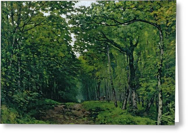 Forest Floor Paintings Greeting Cards - The Avenue of Chestnut Trees Greeting Card by Alfred Sisley