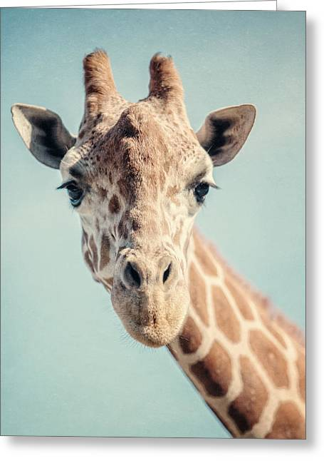 Whimsical Greeting Cards - The Baby Giraffe Greeting Card by Lisa Russo