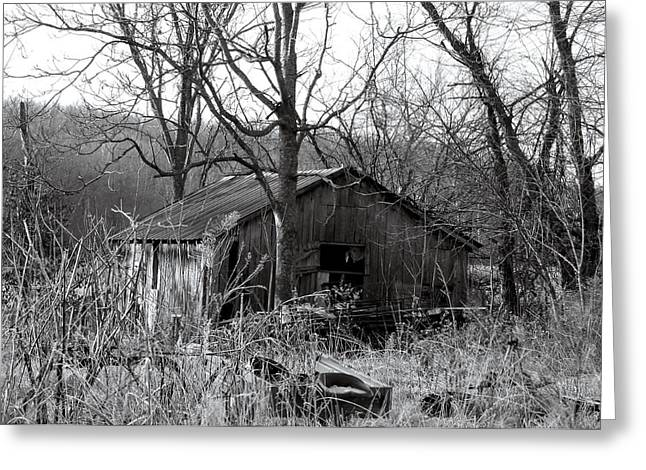 Branches Greeting Cards - The barn Greeting Card by Felix Concepcion