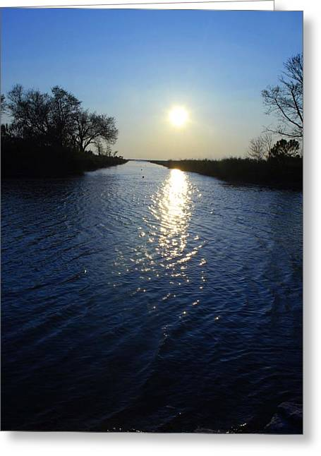 Eye4life Photography Greeting Cards - The Bayou Greeting Card by Alicia Morales