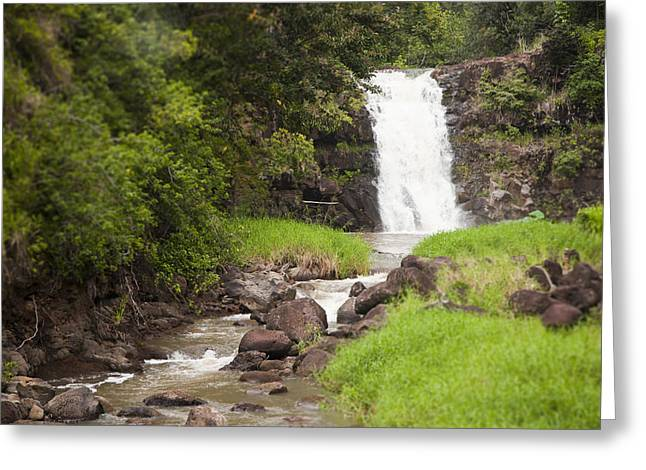 Waimea Falls Greeting Cards - The Beautiful Waimea Falls On Oahu Greeting Card by Taylor S. Kennedy