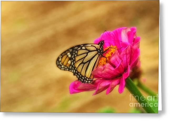 The Beauty Of Flowers Greeting Card by Tamera James