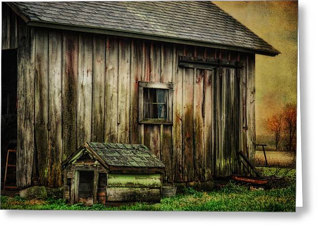 Doghouse Greeting Cards - The Big and The Small Greeting Card by Mary Timman