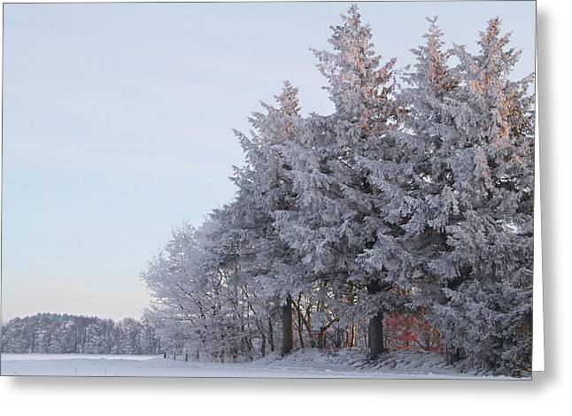 Wintry Photographs Greeting Cards - The Big Freeze Greeting Card by Odd Jeppesen