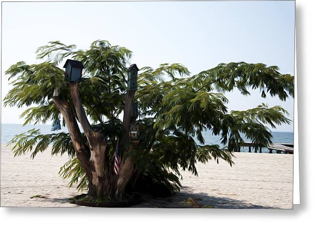 On The Beach Digital Greeting Cards - The Birdhouse Tree on the Beach Greeting Card by Bill Cannon