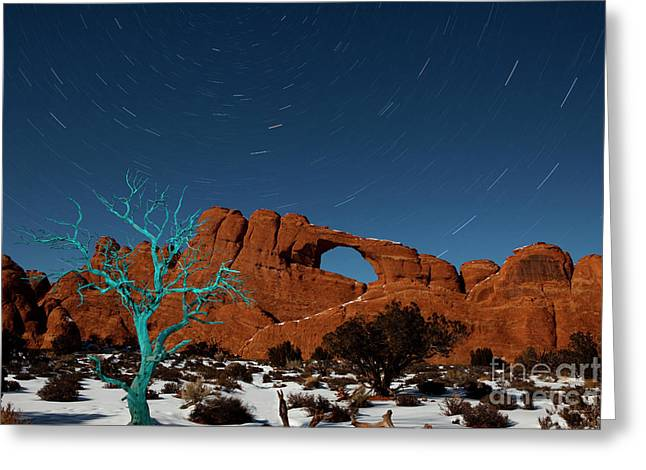 Night Time Sky Greeting Cards - The Blue Tree Greeting Card by Keith Kapple
