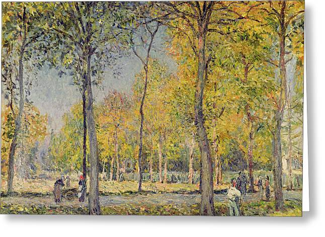 The Trees Greeting Cards - The Bois de Boulogne Greeting Card by Alfred Sisley