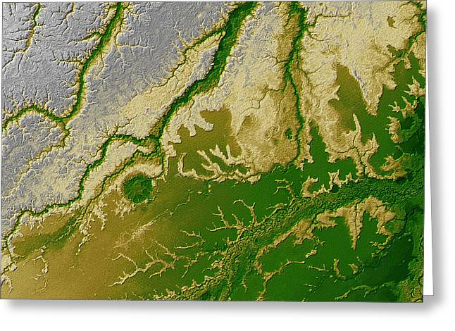 Relief Map Greeting Cards - The Bolivian Amazon Greeting Card by Stocktrek Images