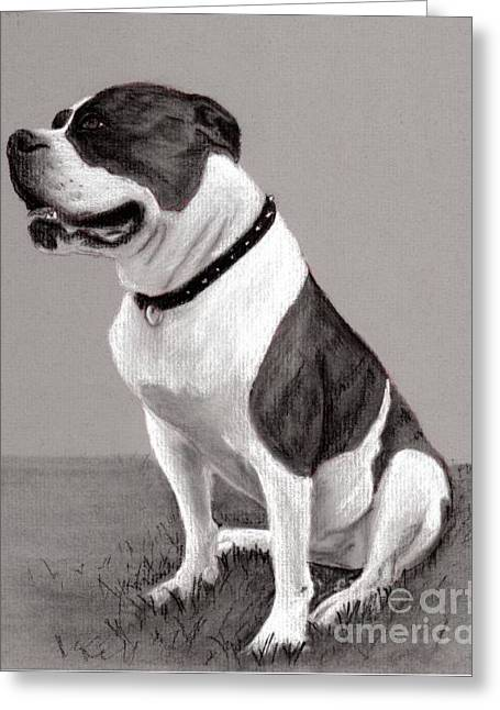 Custom Pet Drawing Greeting Cards - The Boss - Portrait of an American Bulldog Greeting Card by Ruthie K Sutter