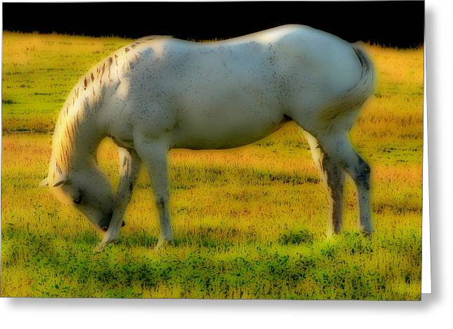 Horse Images Mixed Media Greeting Cards - The Bow Down Greeting Card by Ms Judi
