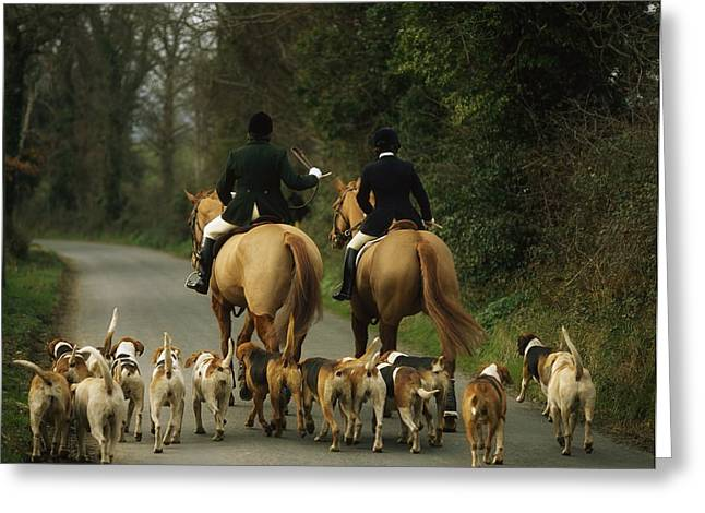 Equestrianism Greeting Cards - The Bray Harriers, Co Wicklow, Ireland Greeting Card by The Irish Image Collection