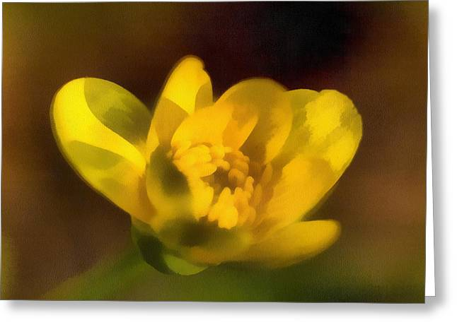 Best Sellers -  - Sweating Paintings Greeting Cards - The buttercup Greeting Card by Odon Czintos