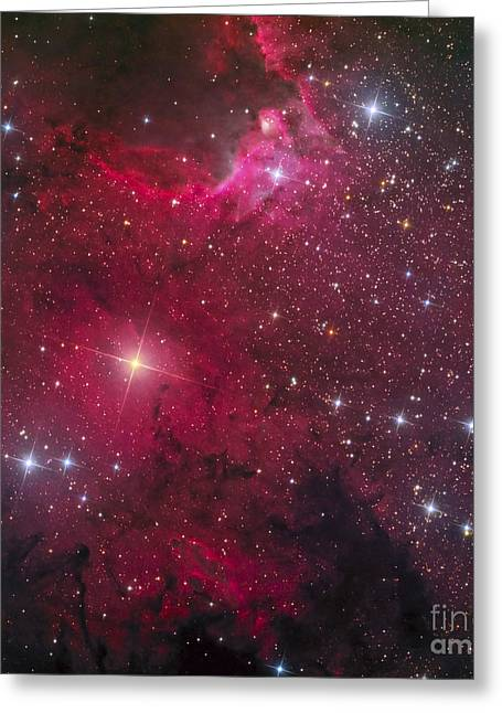 Twinkle Greeting Cards - The Cave Nebula Greeting Card by Don Goldman
