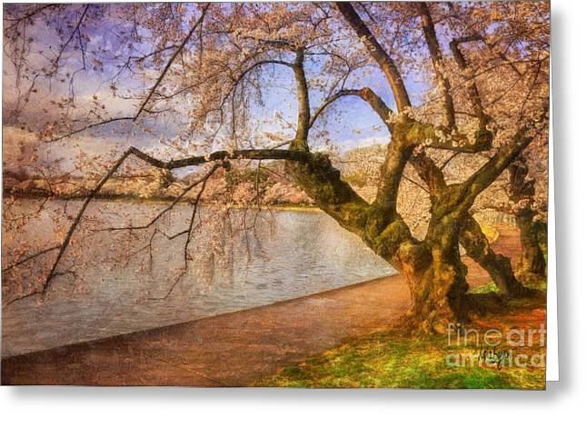 Pink Blossoms Digital Art Greeting Cards - The Cherry Blossom Festival Greeting Card by Lois Bryan