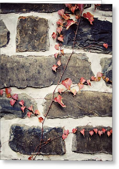 Reform Photographs Greeting Cards - The Church Ivy Greeting Card by Lisa Russo