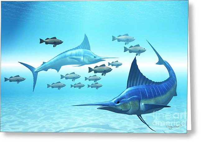 Swordfish Greeting Cards - The Circle Greeting Card by Corey Ford